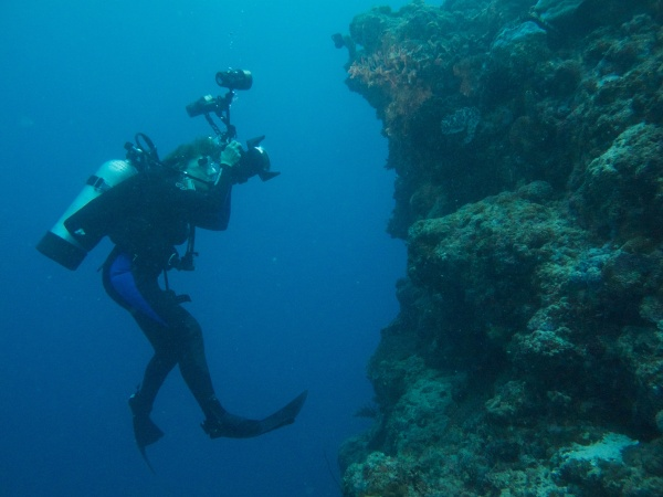 The new documentary Mission Blue, charts the life of oceanographer Sylvia Earle. Director Fisher Stevens set out to make a film about her work, and ended up being fascinated by the person. Photo: Mission Blue